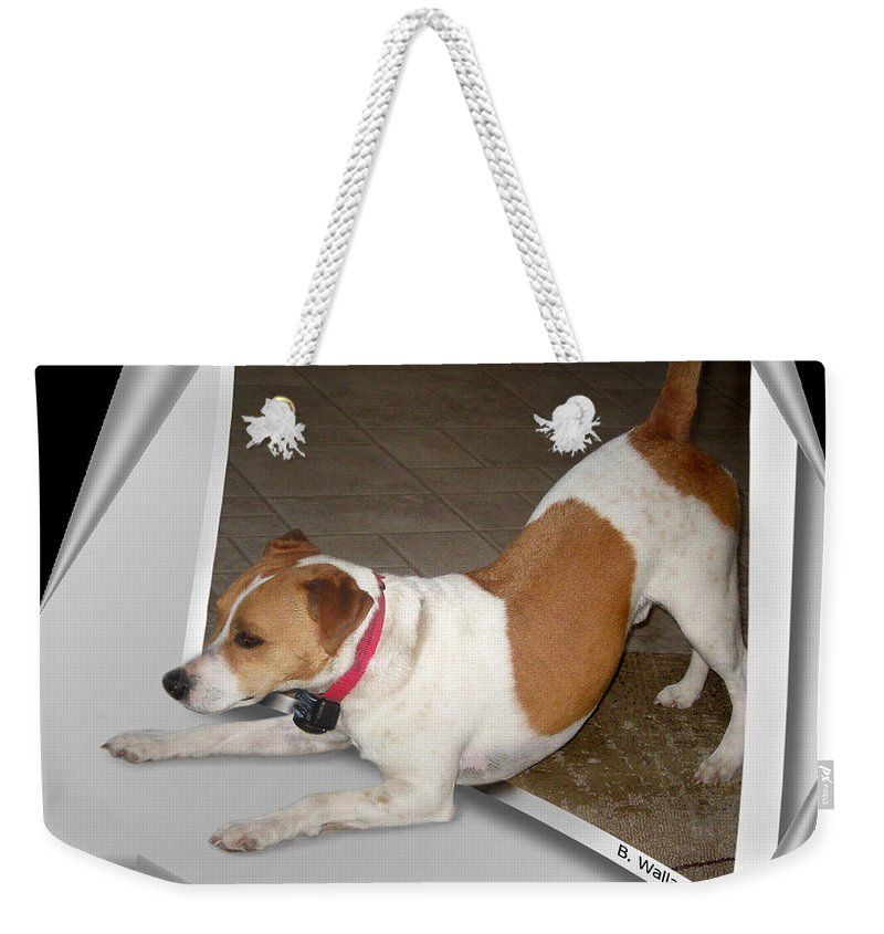 2d Weekender Tote Bag featuring the photograph Feeling Frisky by Brian Wallace