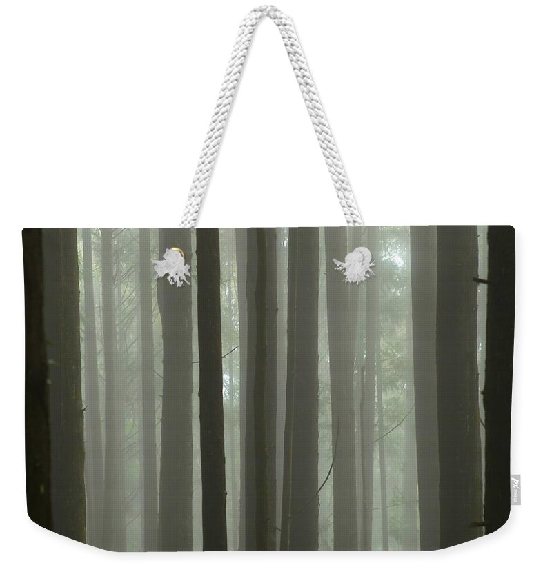Forest Weekender Tote Bag featuring the photograph Misty Forest by MingTa Li