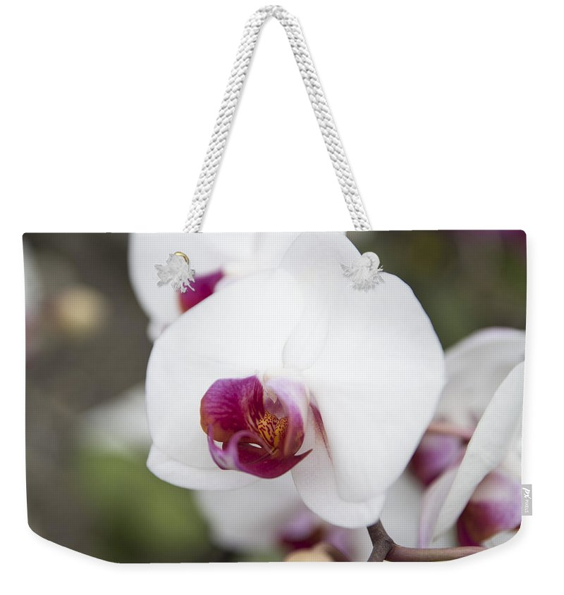 Orchid Weekender Tote Bag featuring the photograph Orchid by Ilze Lucero