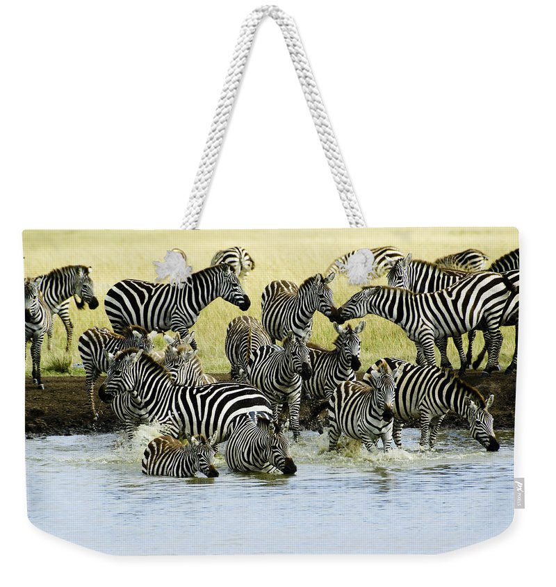 Africa Weekender Tote Bag featuring the photograph Quenching Their Thirst by Michele Burgess