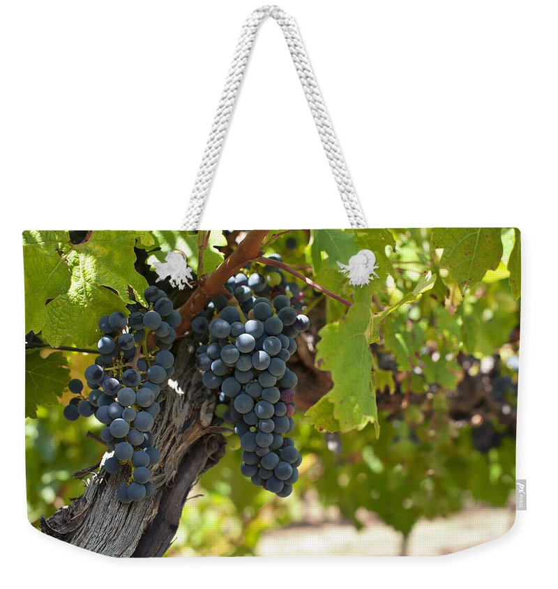 Agriculture Weekender Tote Bag featuring the photograph Red Vines by U Schade