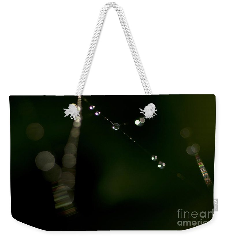 Aranae Weekender Tote Bag featuring the photograph Spider Web Abstracts by Jim Corwin