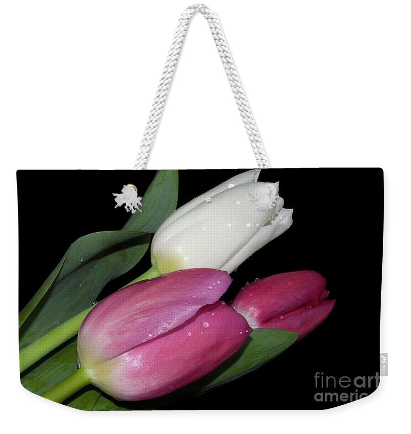 Flowers Weekender Tote Bag featuring the photograph Three Tulips by Elvira Ladocki