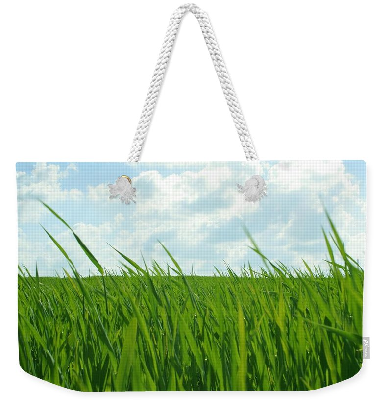 4 Nature Grass Weekender Tote Bag featuring the digital art 38744 Nature Grass by Mery Moon