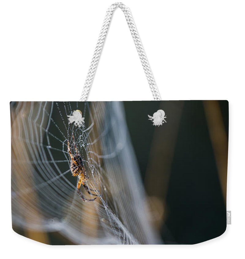 Arachnid Weekender Tote Bag featuring the photograph 3d Web by Robert Potts
