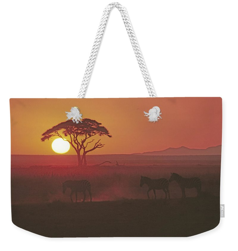 Africa Weekender Tote Bag featuring the photograph African Sunrise by Michele Burgess