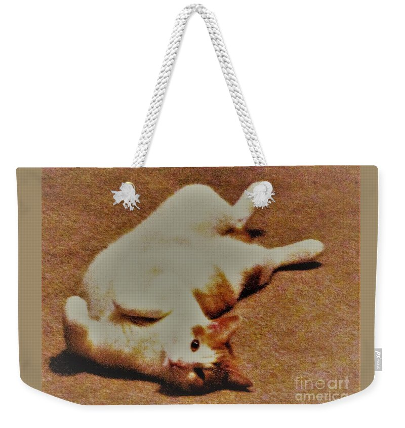 Animal Weekender Tote Bag featuring the photograph Amber by Tatyana Shvartsakh