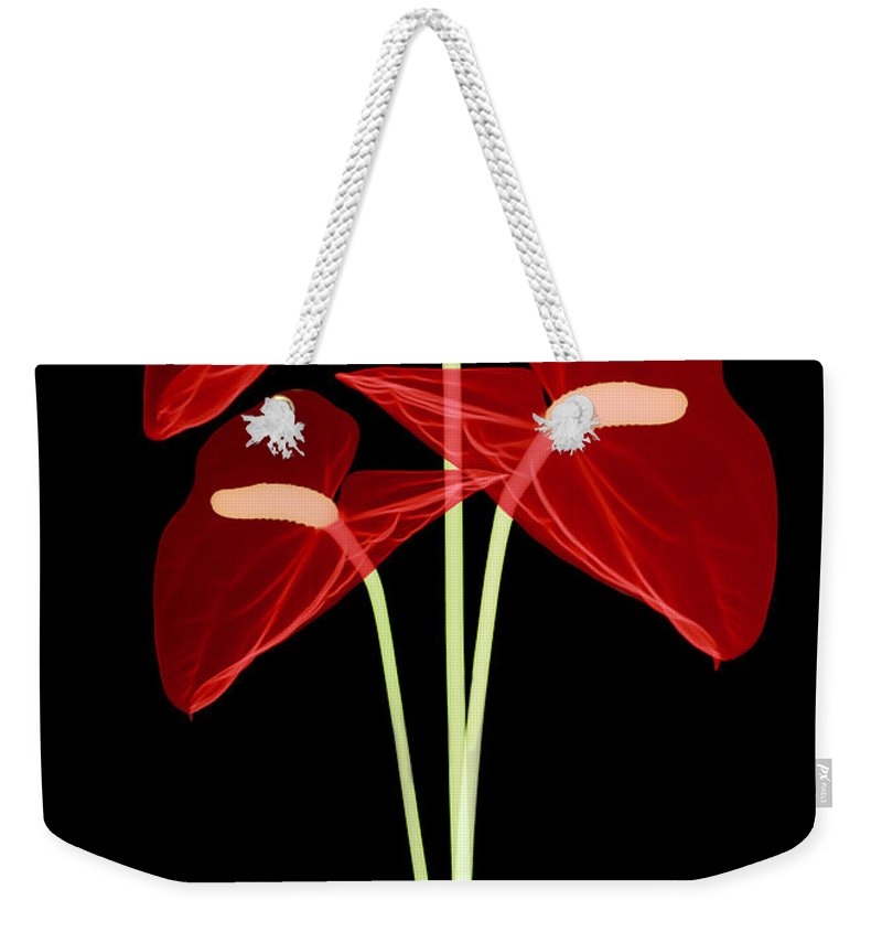 Science Weekender Tote Bag featuring the photograph Anthurium Flowers, X-ray by Ted Kinsman