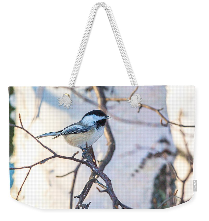 Chickadee Weekender Tote Bag featuring the photograph Black-capped Chickadee by Dee Carpenter