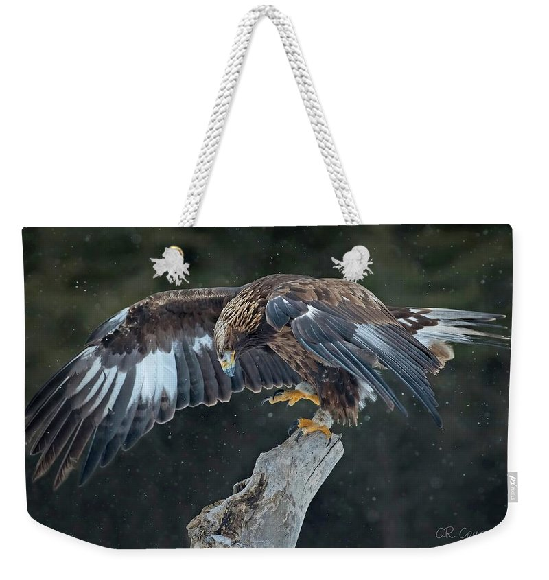 Eagle Weekender Tote Bag featuring the photograph Golden Eagle by CR Courson