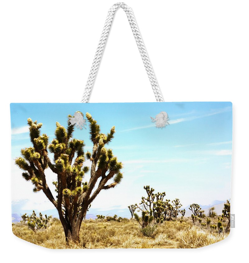 Desert Life Weekender Tote Bag featuring the photograph Joshua Tree Desert by Gravityx9 Designs
