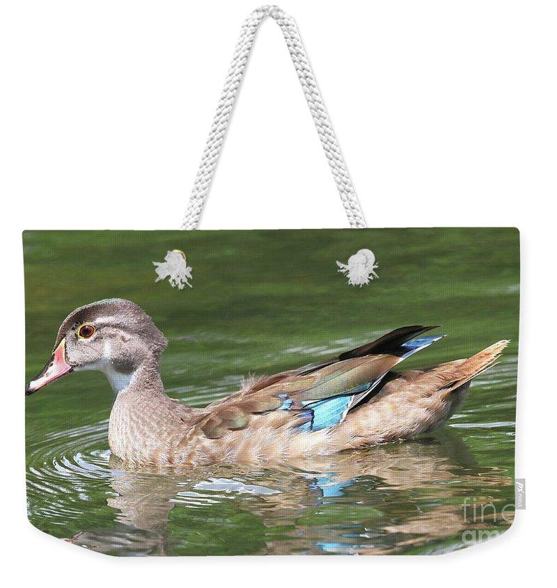 Juvenile Male Wood Duck Weekender Tote Bag For Sale By Ken Keener