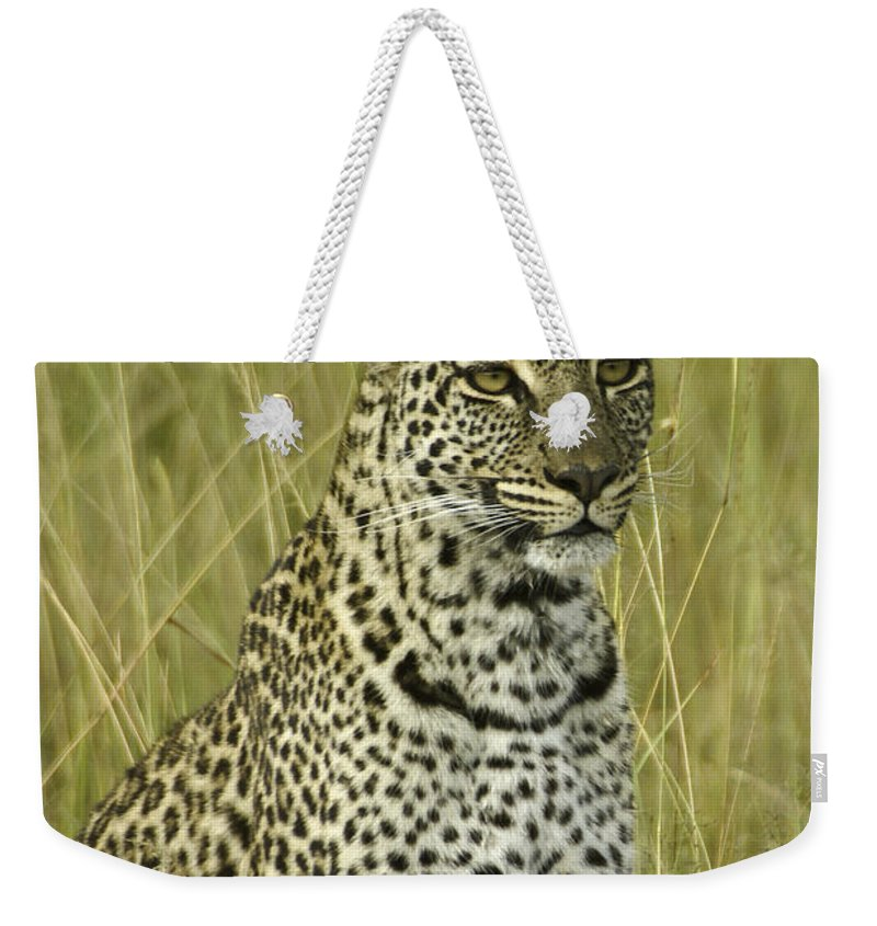 Africa Weekender Tote Bag featuring the photograph Lovely Leopard by Michele Burgess