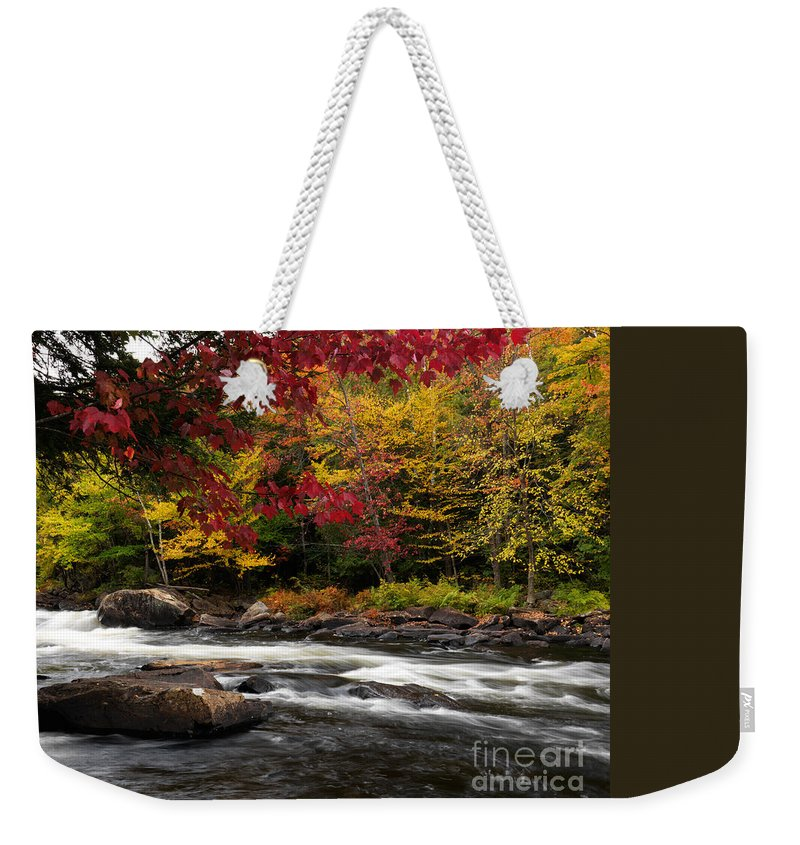 Autumn Weekender Tote Bag featuring the photograph Ontario Autumn Scenery by Oleksiy Maksymenko