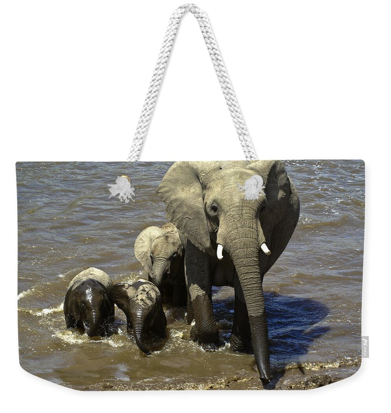 Africa Weekender Tote Bag featuring the photograph River Crossing by Michele Burgess