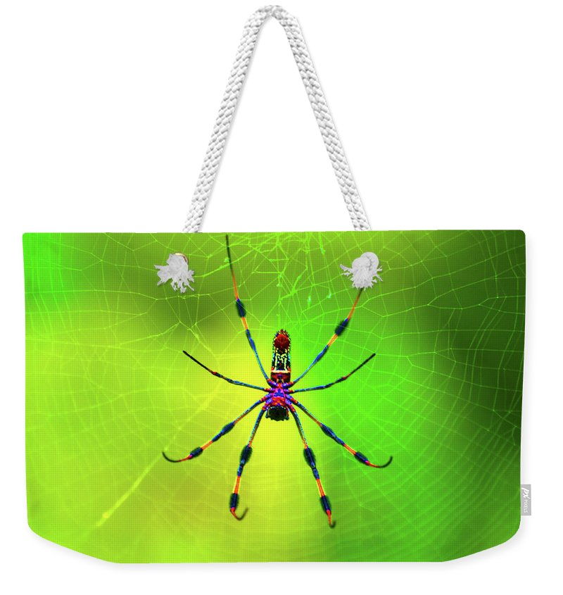 Spider Weekender Tote Bags
