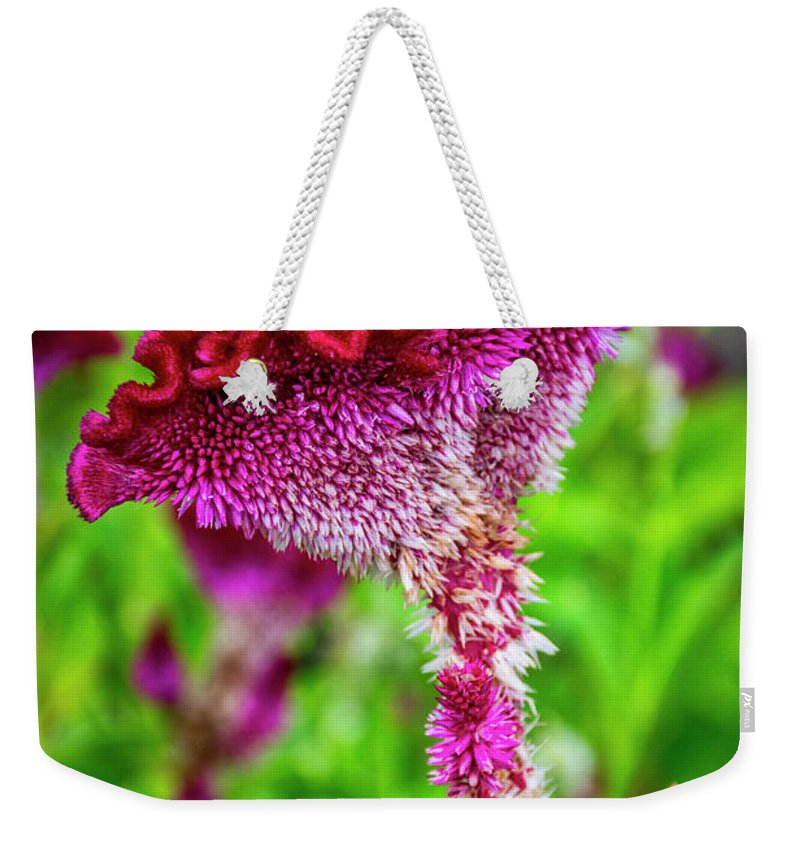 University Circle Weekender Tote Bag featuring the photograph 4390- Flower by David Lange