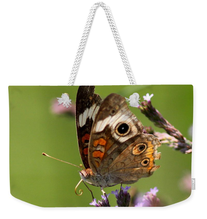 Butterfly Weekender Tote Bag featuring the photograph 4467 - Butterfly by Travis Truelove