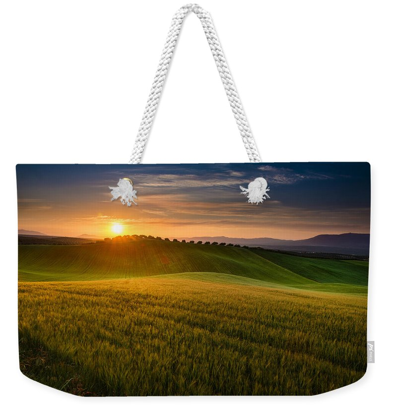 Plants Weekender Tote Bag featuring the photograph Cereal Fields by Guido Montanes Castillo
