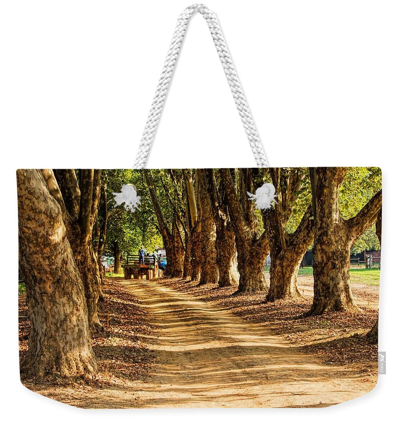 Forest Weekender Tote Bag featuring the photograph Countryside by FL collection