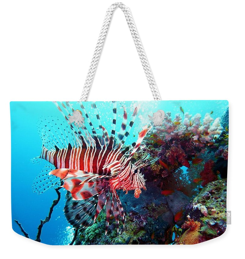 Fish Weekender Tote Bag featuring the photograph Fish by FL collection