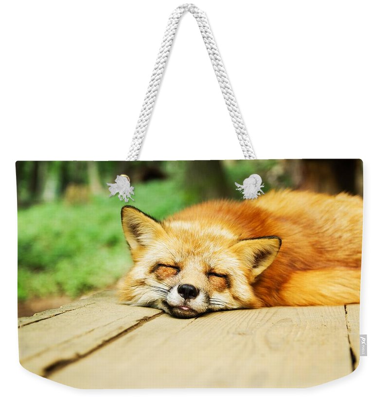 Fox Weekender Tote Bag featuring the photograph Fox by FL collection