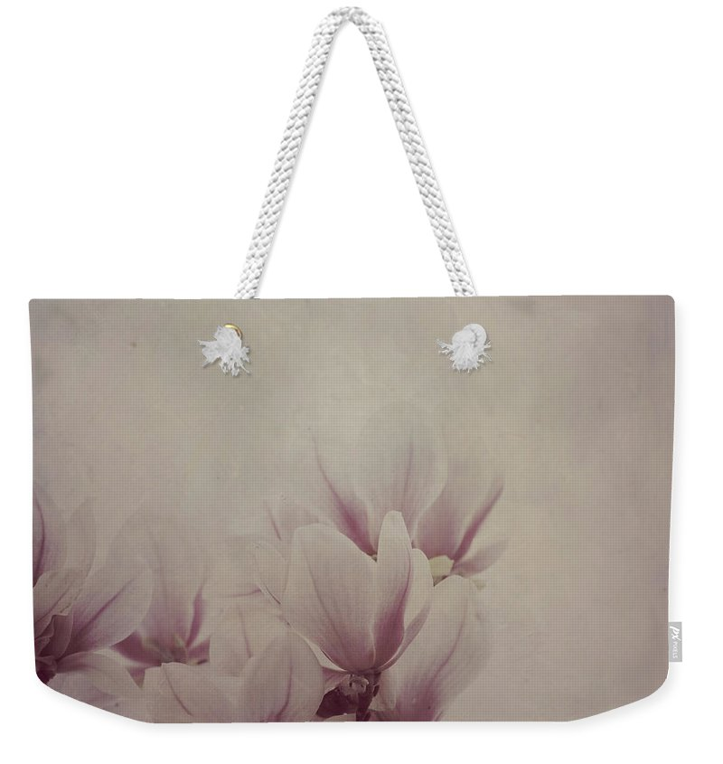 Magnolia Weekender Tote Bag featuring the photograph Magnolia Tree On Vintage Background by Jelena Jovanovic