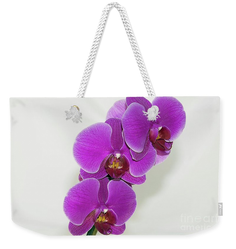 Flowers Weekender Tote Bag featuring the photograph Purple Orchid by Elvira Ladocki
