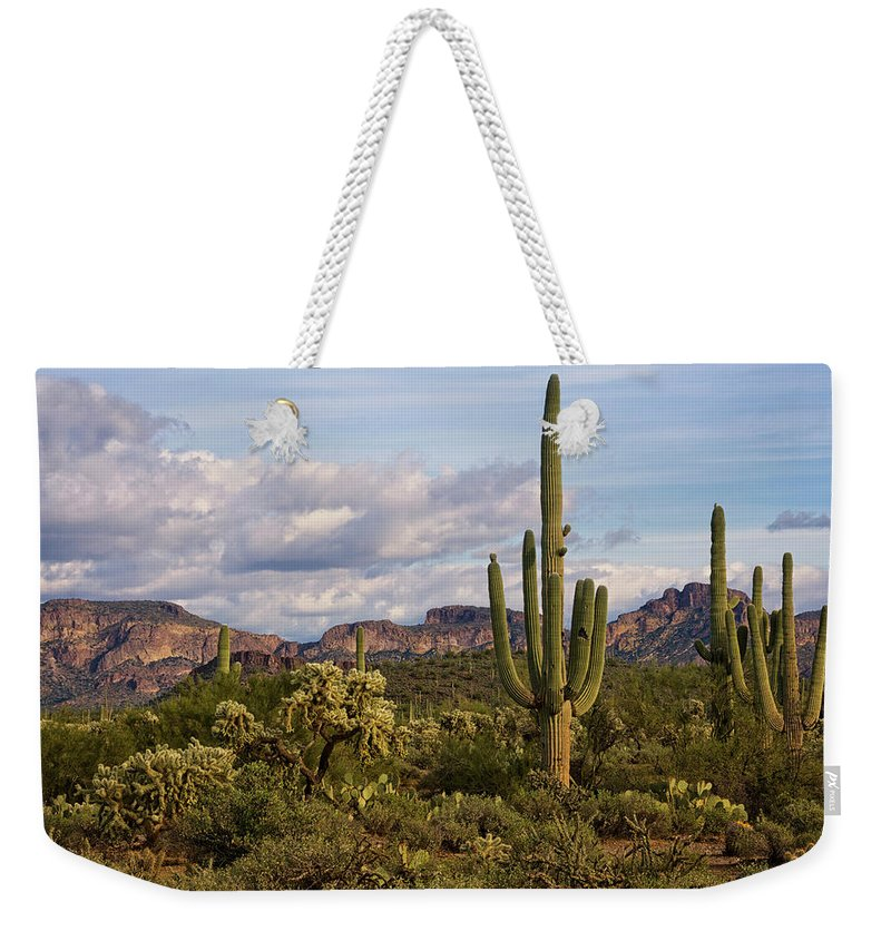 Sonoran Desert Weekender Tote Bag featuring the photograph Sonoran Desert by Saija Lehtonen