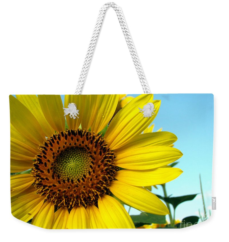 Sunflowers Weekender Tote Bag featuring the photograph Sunflower Series by Amanda Barcon