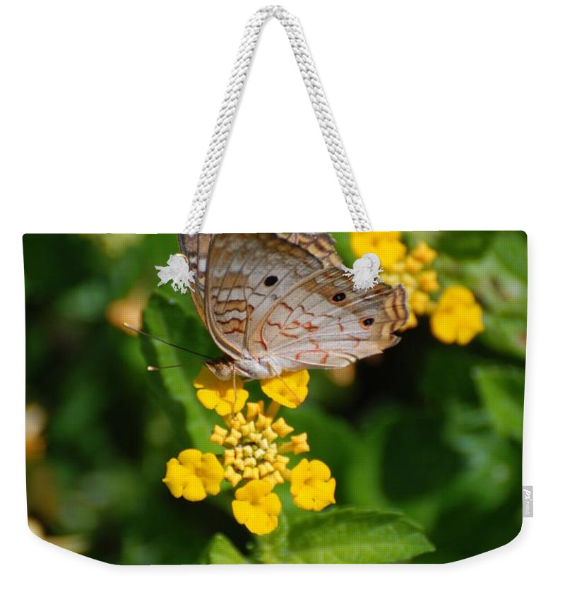 Butterfly Weekender Tote Bag featuring the photograph 5 Yellow Flowers And A Buttefly by Rob Hans