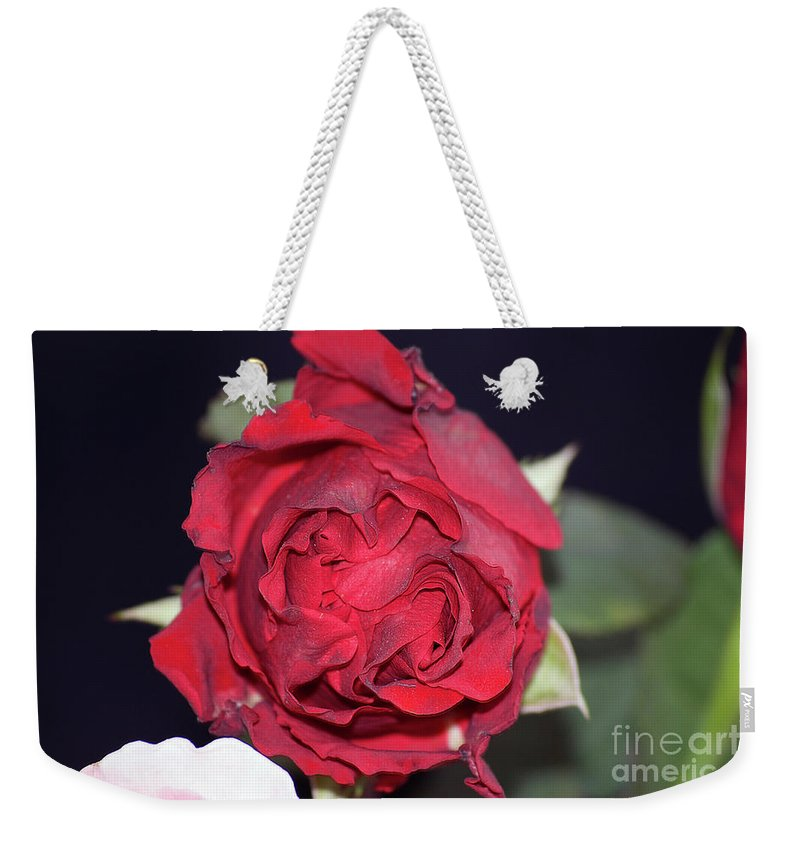 Flowers Weekender Tote Bag featuring the photograph Red Rose by Elvira Ladocki