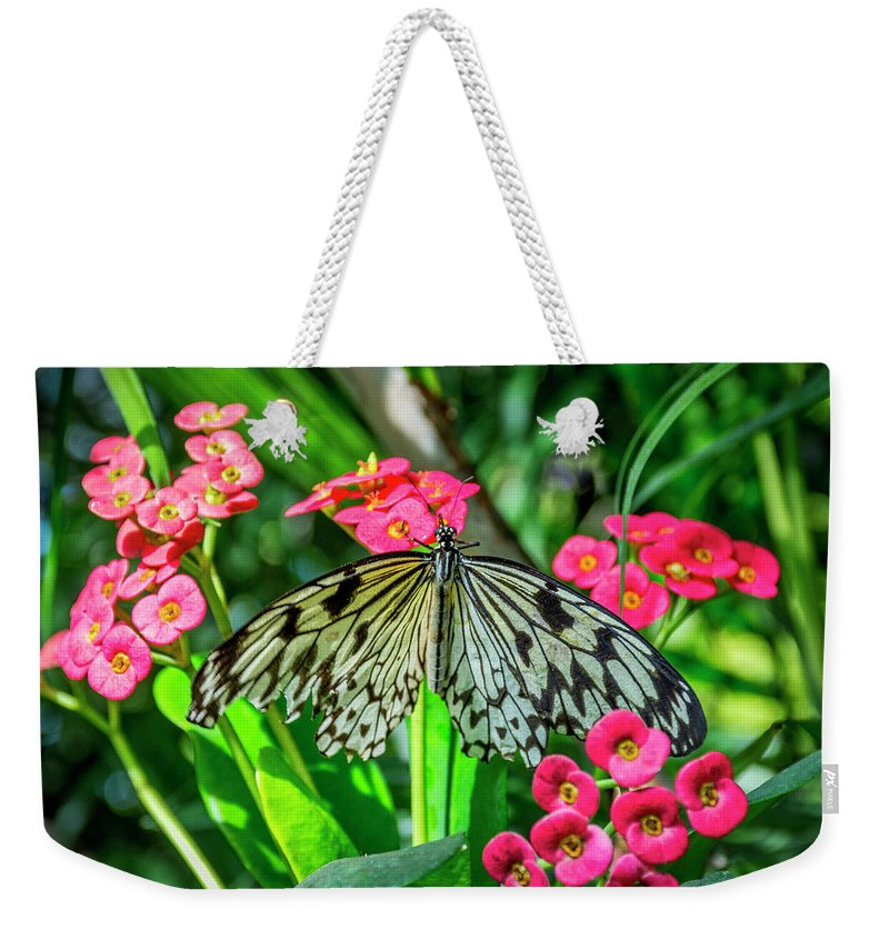 Florida Weekender Tote Bag featuring the photograph 5050- Butterfly by David Lange