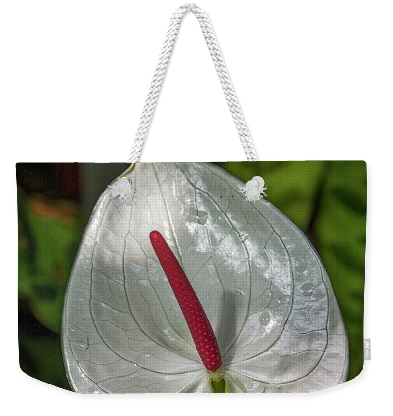 Florida Weekender Tote Bag featuring the photograph 5129- Flower by David Lange
