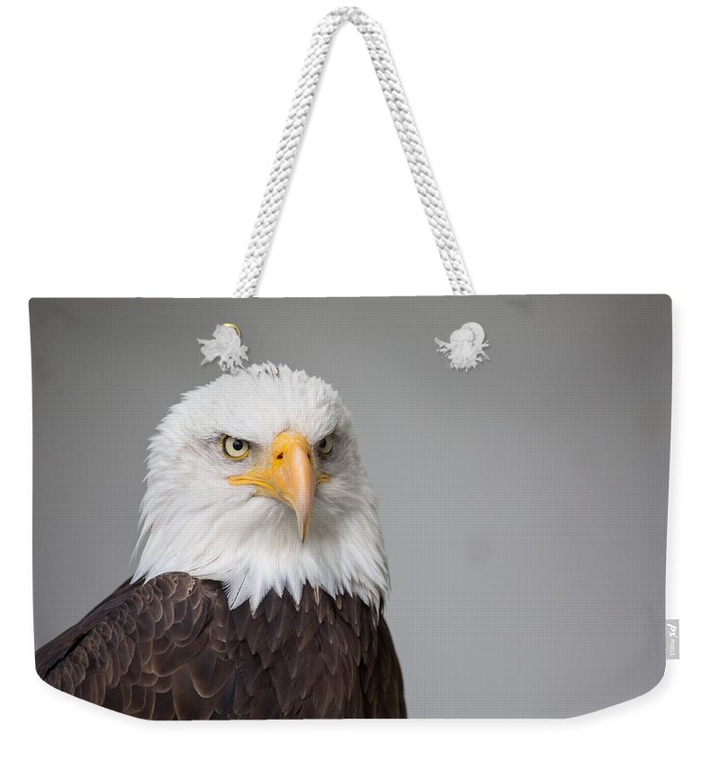 Eagle Weekender Tote Bag featuring the photograph Eagle by FL collection