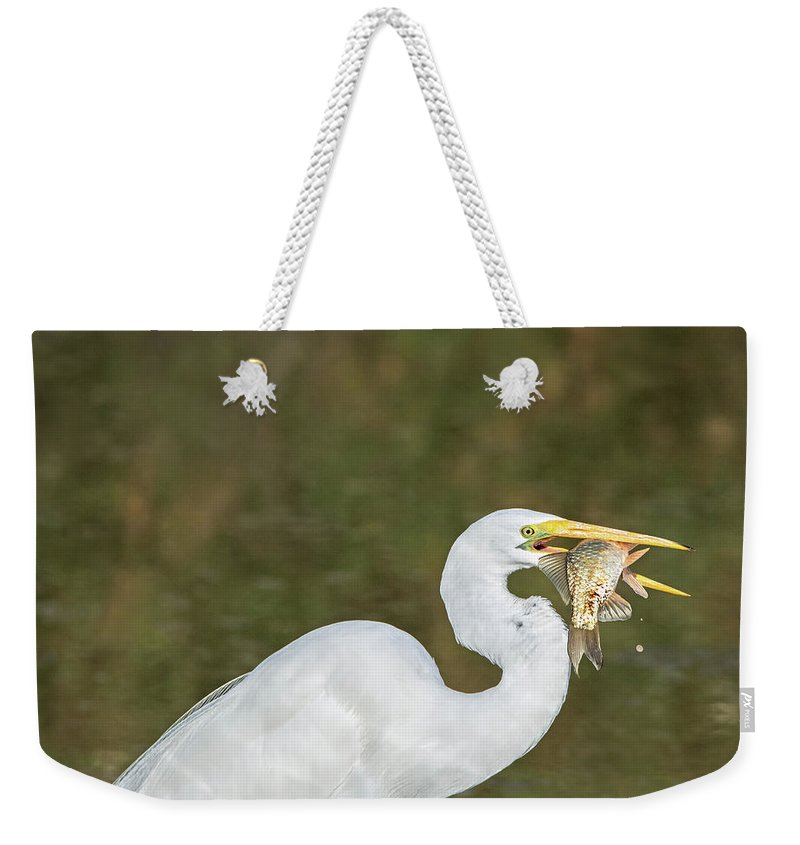 Great Weekender Tote Bag featuring the photograph Great Egret With Fish by Tam Ryan