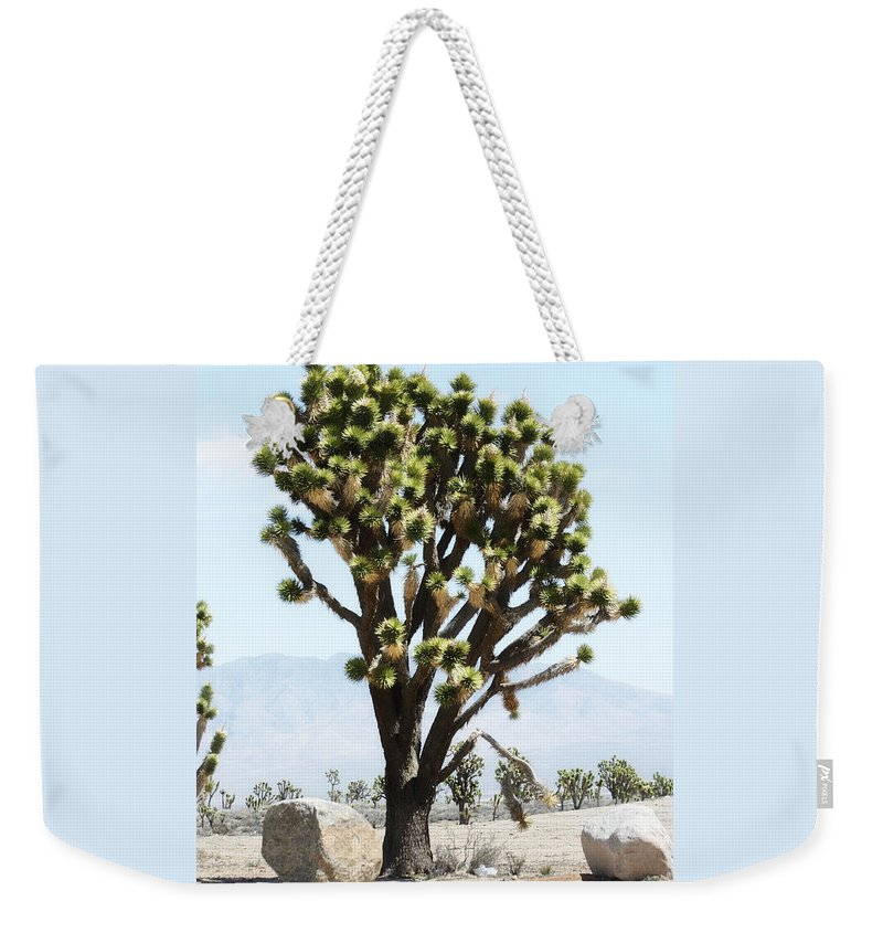 Desert Life Weekender Tote Bag featuring the photograph Joshua Tree by Gravityx9 Designs