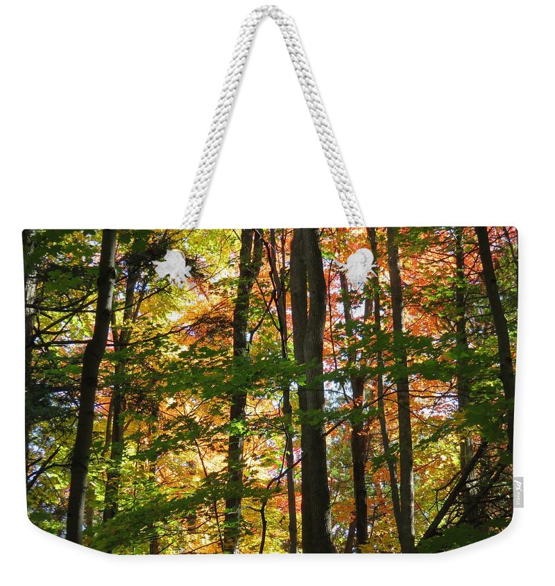 Non_city Weekender Tote Bag featuring the photograph Nature by FL collection