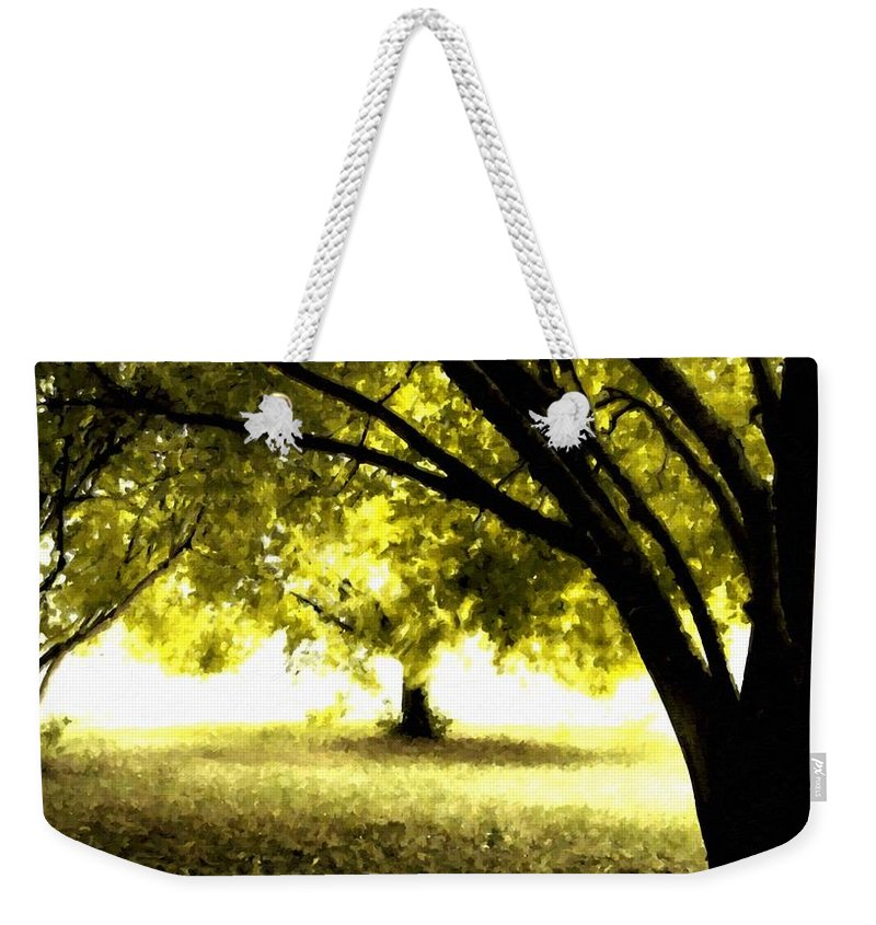 Pro Weekender Tote Bag featuring the digital art Landscape Wall by Usa Map