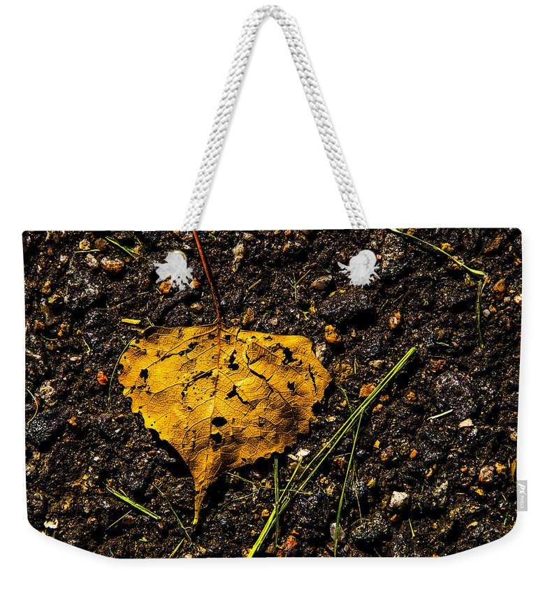 Cherry Creek Weekender Tote Bag featuring the photograph Leaf by Angus Hooper Iii