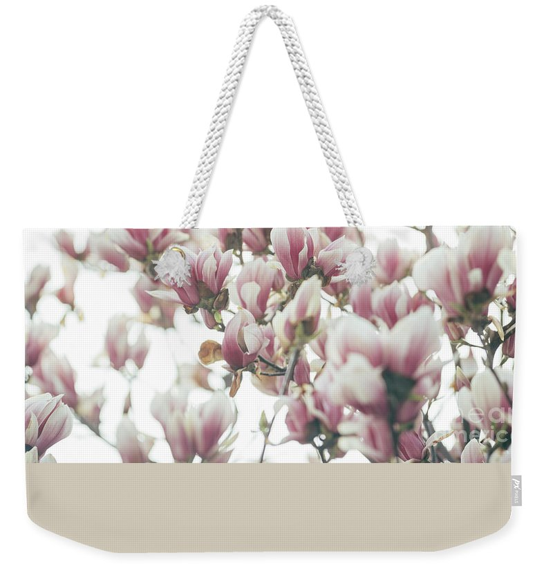 Magnolia Weekender Tote Bag featuring the photograph Magnolia by Jelena Jovanovic