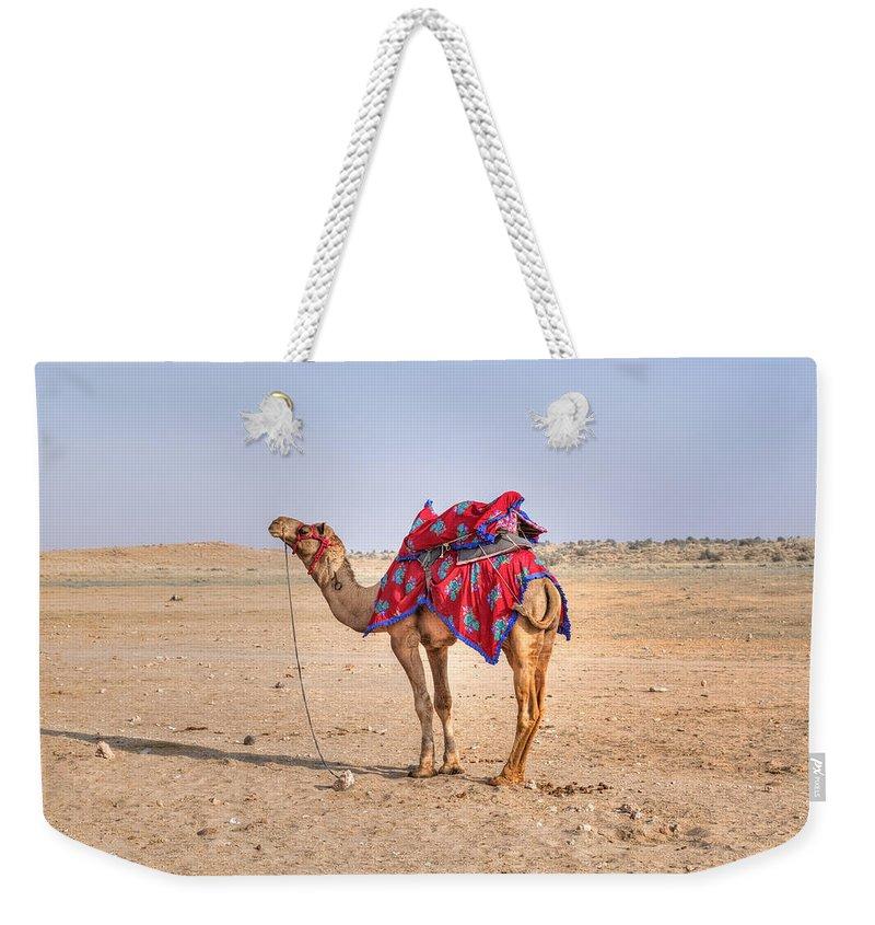 Camel Weekender Tote Bags