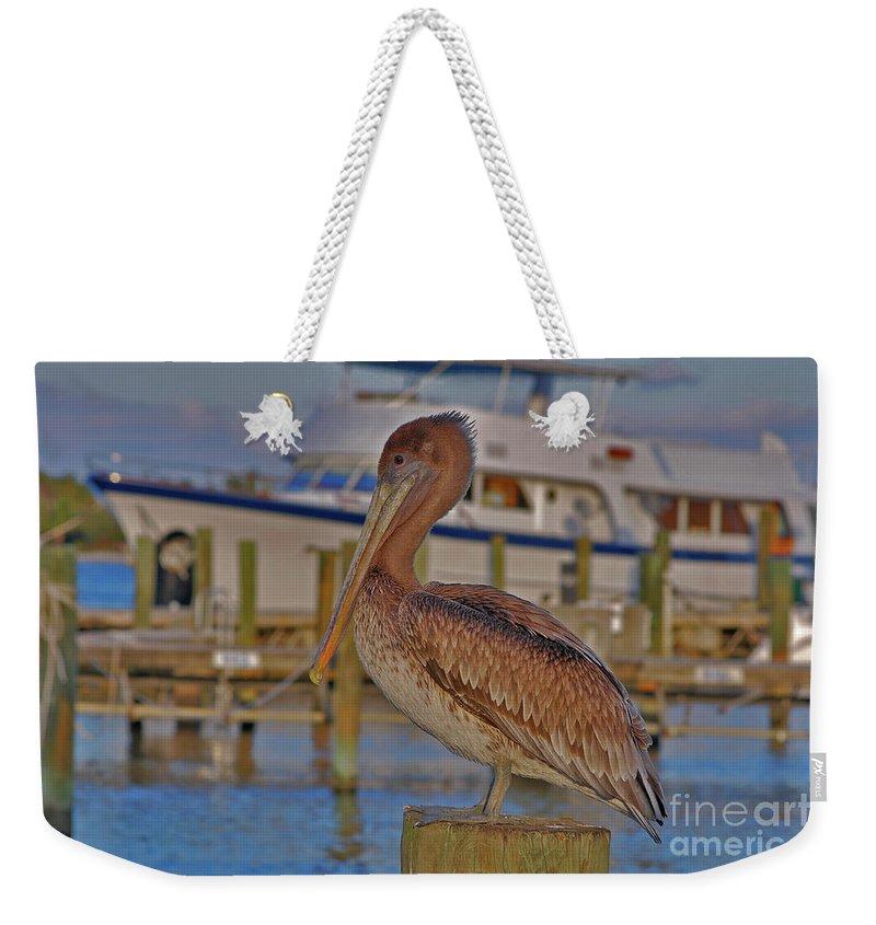 Brown Pelican Weekender Tote Bag featuring the photograph 8- Brown Pelican by Joseph Keane