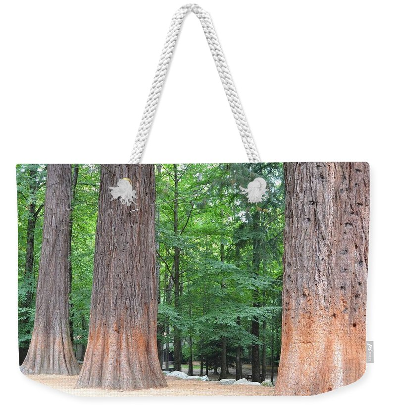 Non_city Weekender Tote Bag featuring the photograph Forestry by FL collection