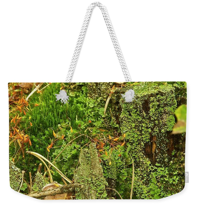 Moss Weekender Tote Bag featuring the photograph Mosses And Liverworts 8861 by Michael Peychich