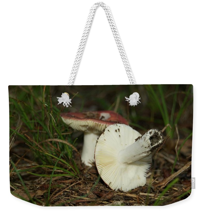 Weekender Tote Bag featuring the photograph 9061 by Michael Peychich