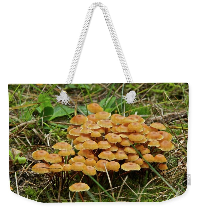 Weekender Tote Bag featuring the photograph 9087 by Michael Peychich