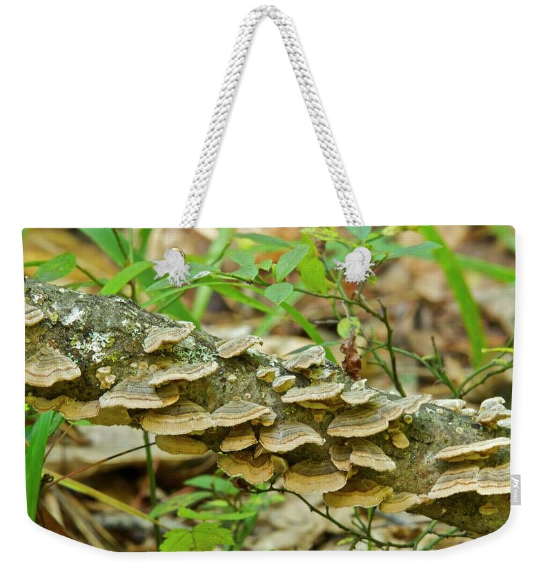 Polypores Weekender Tote Bag featuring the photograph Polypores 9155 by Michael Peychich