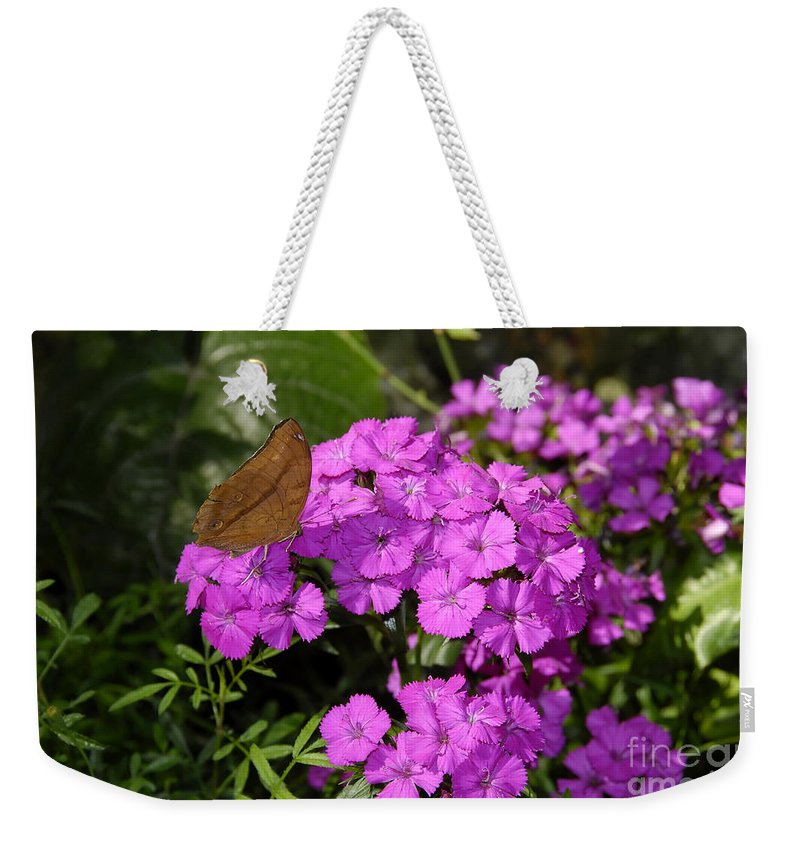 Butterfly Weekender Tote Bag featuring the photograph A Beautiful Landing by David Lee Thompson