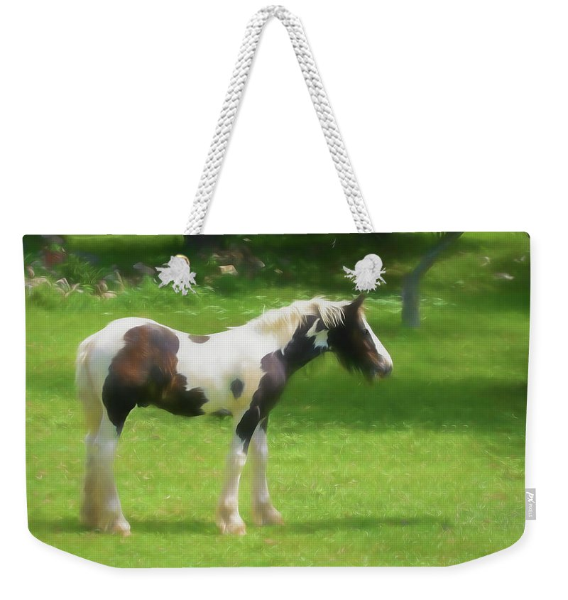 Gypsy Woods Farm Weekender Tote Bag featuring the digital art A Beautiful Young Gypsy Vanner Standing In The Pasture by Rusty R Smith